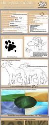 Ecathi Species Meme by anelalani