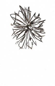 Flower Sketch in Paint