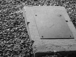 Stepping Stone by IWishIHadWingZ