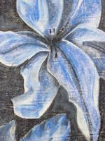 Blue Lily by IWishIHadWingZ