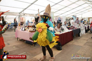 Finished Chocobo and Vivi Cosplay Costume 2014