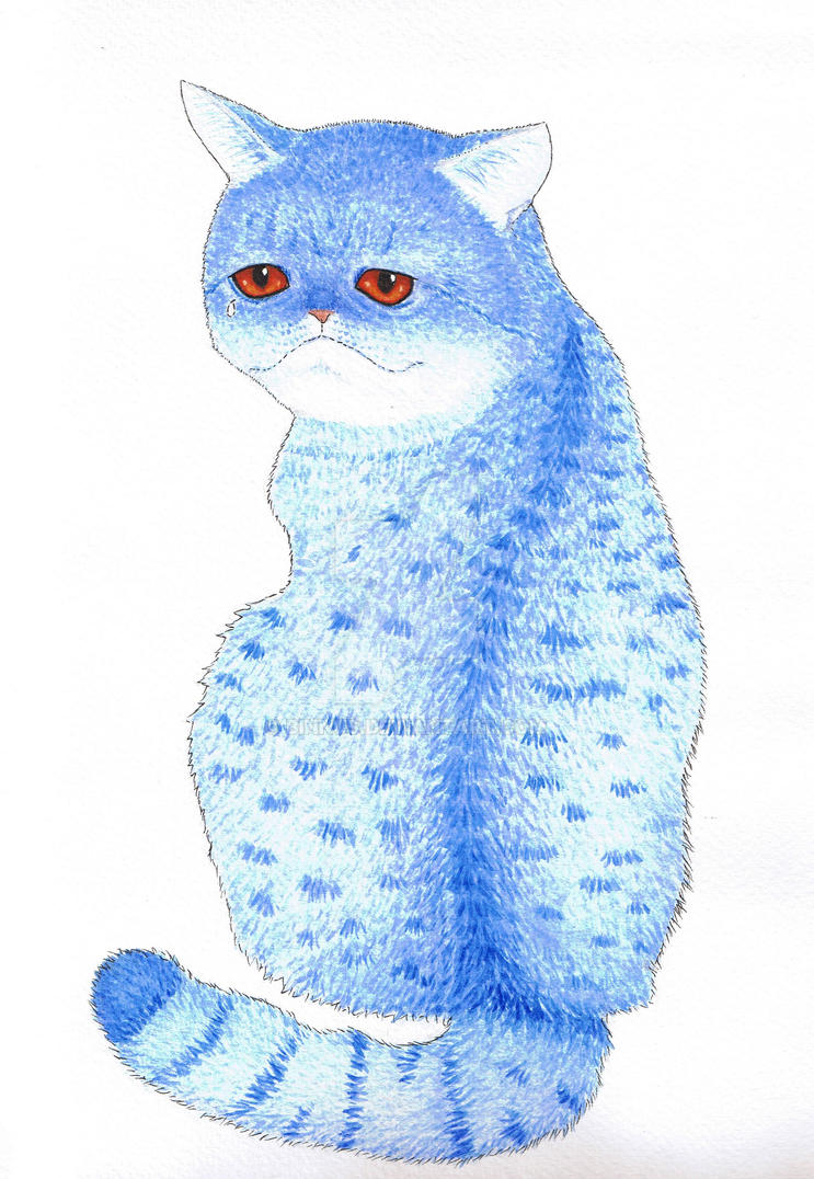 Blue Cat by Binnus