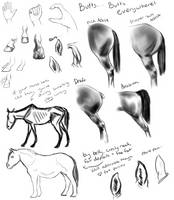 Hand Study by Pandion-Equine