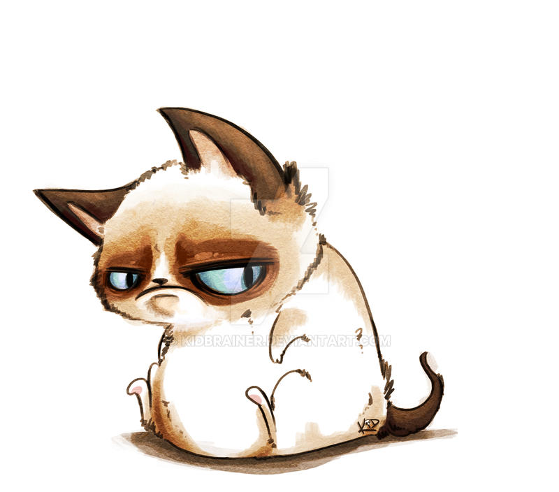 Grumpy Cat by kidbrainer on DeviantArt