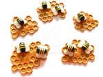 The Bee Community