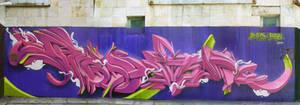erase_rate_2010