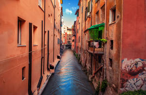 Secrets of Bologna by INVIV0