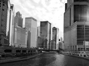 Chicagogros