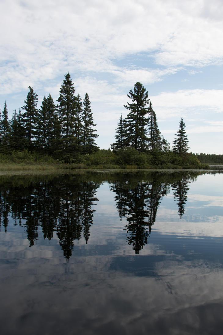 River Reflection by RocksRose