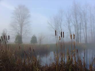 Doc's Autumn Pond