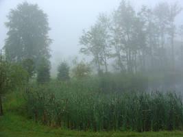 Doc's Summer Pond