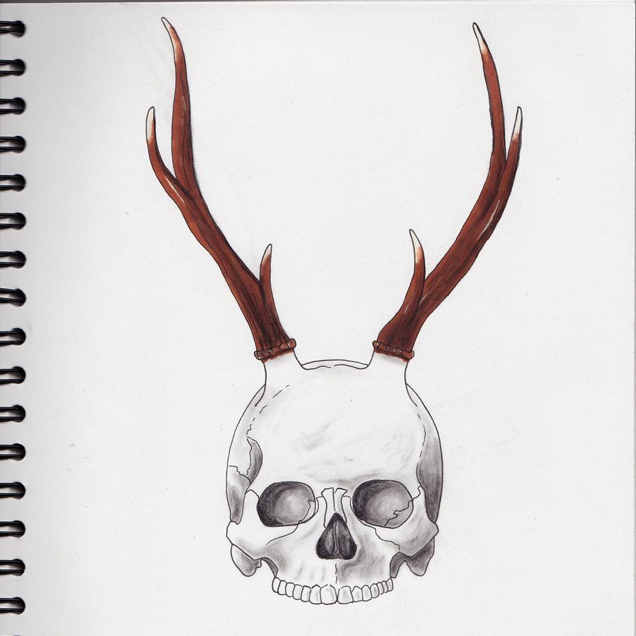 Apprentissage du dessin : mode ON 005_crane_et_cornes_by_shuatinwe-dc07px1