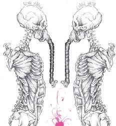 Two Skeleton by Bighurt9488
