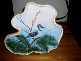 BlueJay on tree mushroom by Arteestique