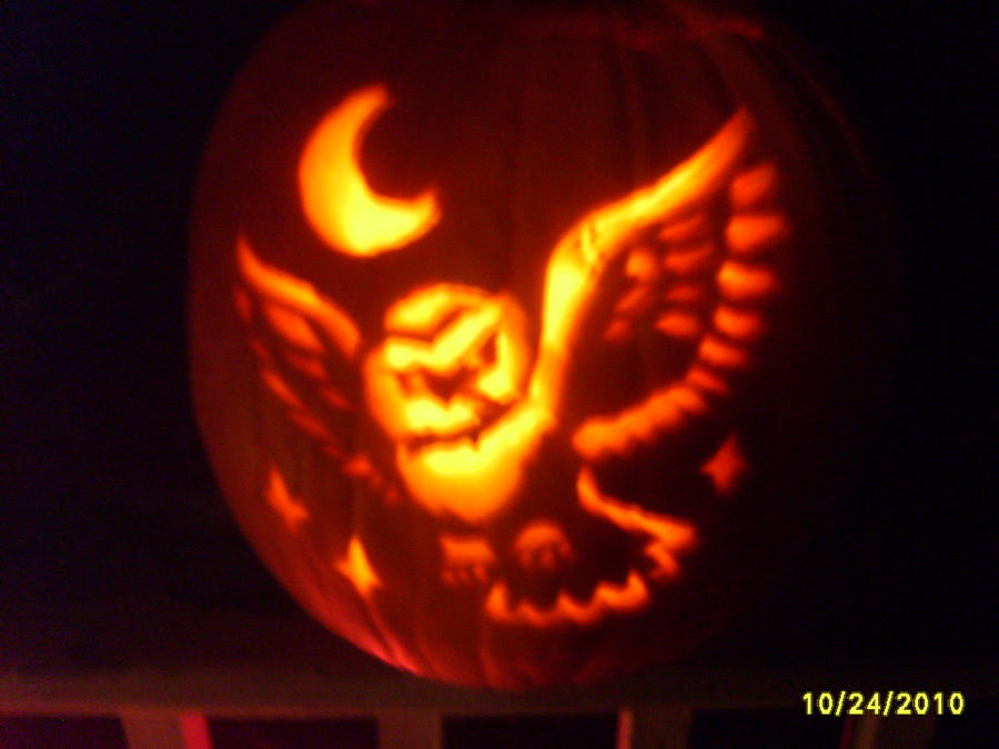 Owl Pumpkin by Wolf9848