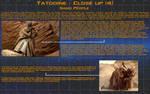 Planetary close up - Tatooine [4]