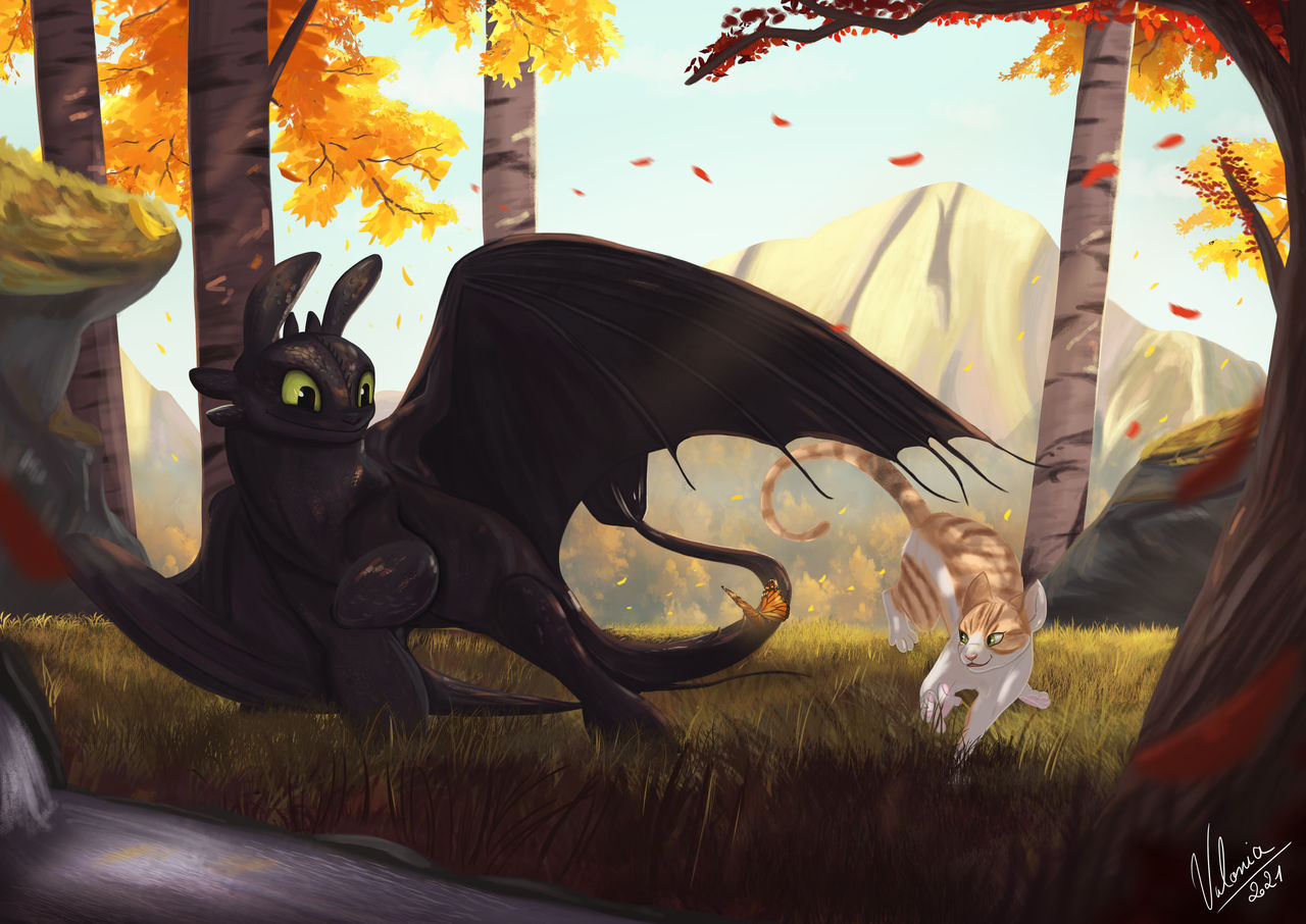 Toothless and Cat