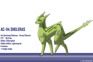 Sheleras
