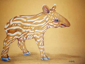 Baby Tapir by Thilil