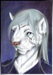 Anthro Portrait - Kana