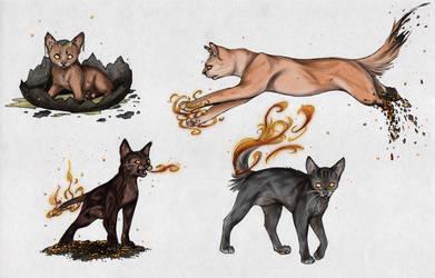 Phoenix Cat Sketches