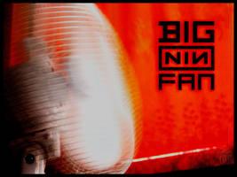 big NIN fan