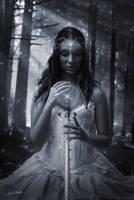 Fairy by da505