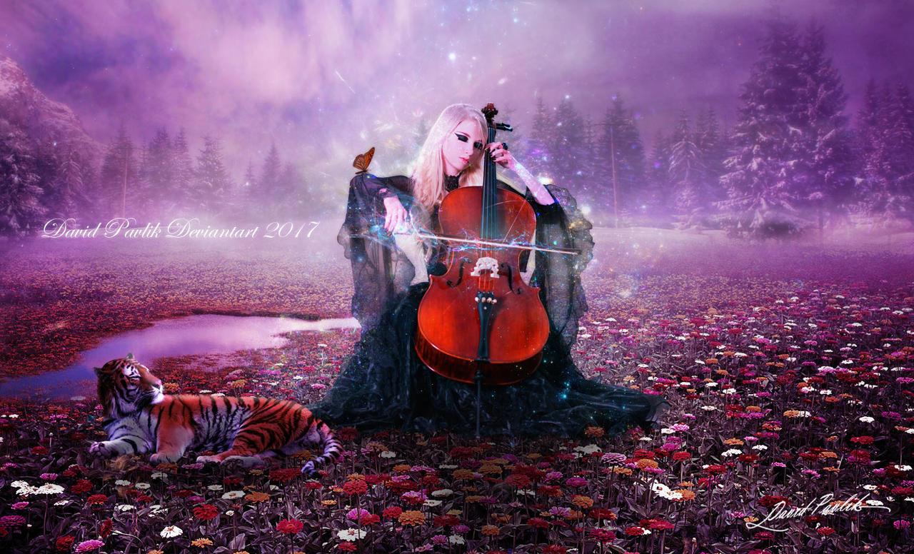 Music Of The Night by da505