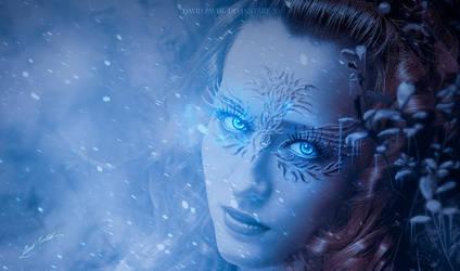 Winter Eyes