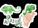 Pascal Doodles