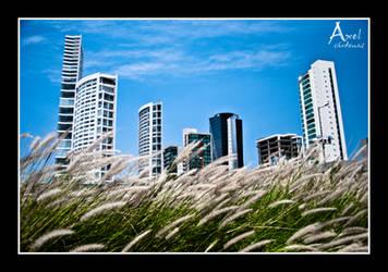 The organic inorganic city by axelmartinez22