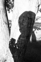 Shadow of Music by darkestsongbird