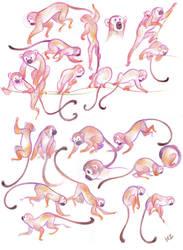 Monkeys! by JHzzz