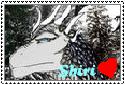 Shiri stamp by ADFTlove