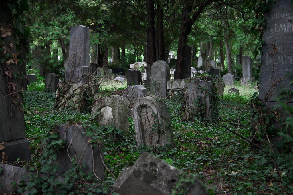 Graveyard 05 by SaturniaStock