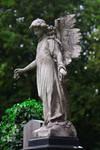 Graveyard 08