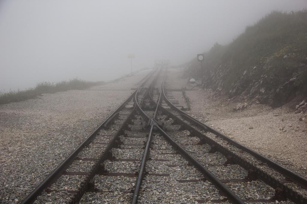 Fog by SaturniaStock
