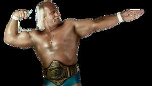 Hulk Hogan WWE 2K14 Render by Swiiftism