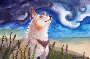 ACEO Wind by Aisha-Autumn