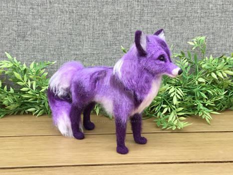 Purple Canine
