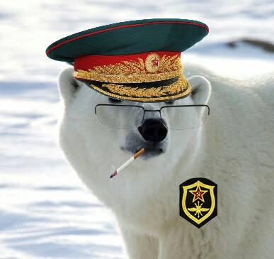 Soviet Polar Bear by DiuxWarson