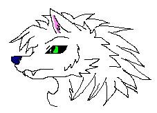 a random wolf by Sonyie
