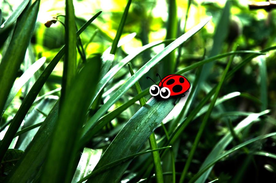 Ladybug by Upham - u�ur b�cekli avatarlar