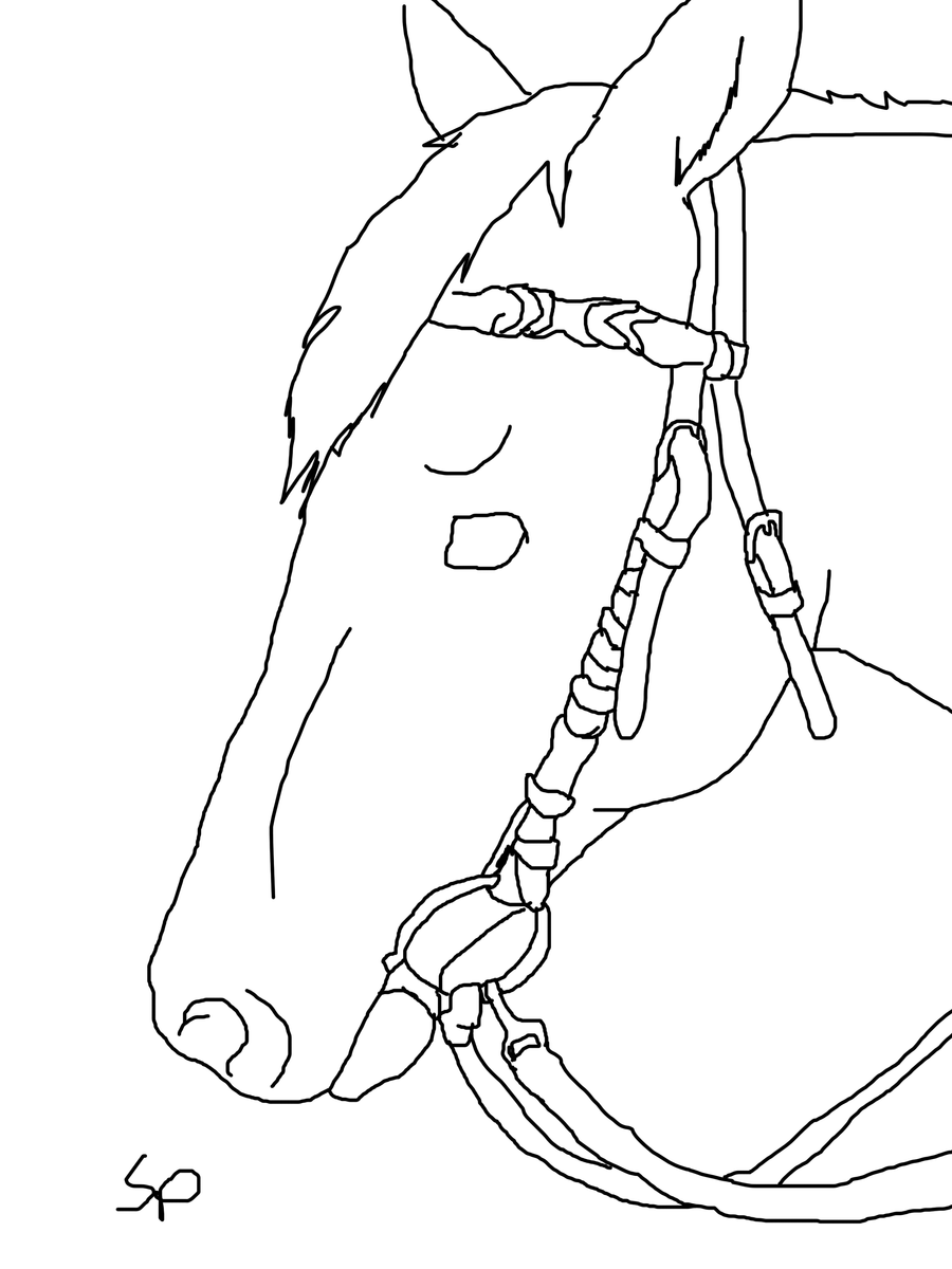 horse head with bridle lineart by spritrain180 on deviantart