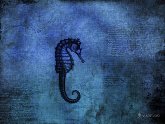Blue Sea Dragon by vladstudio