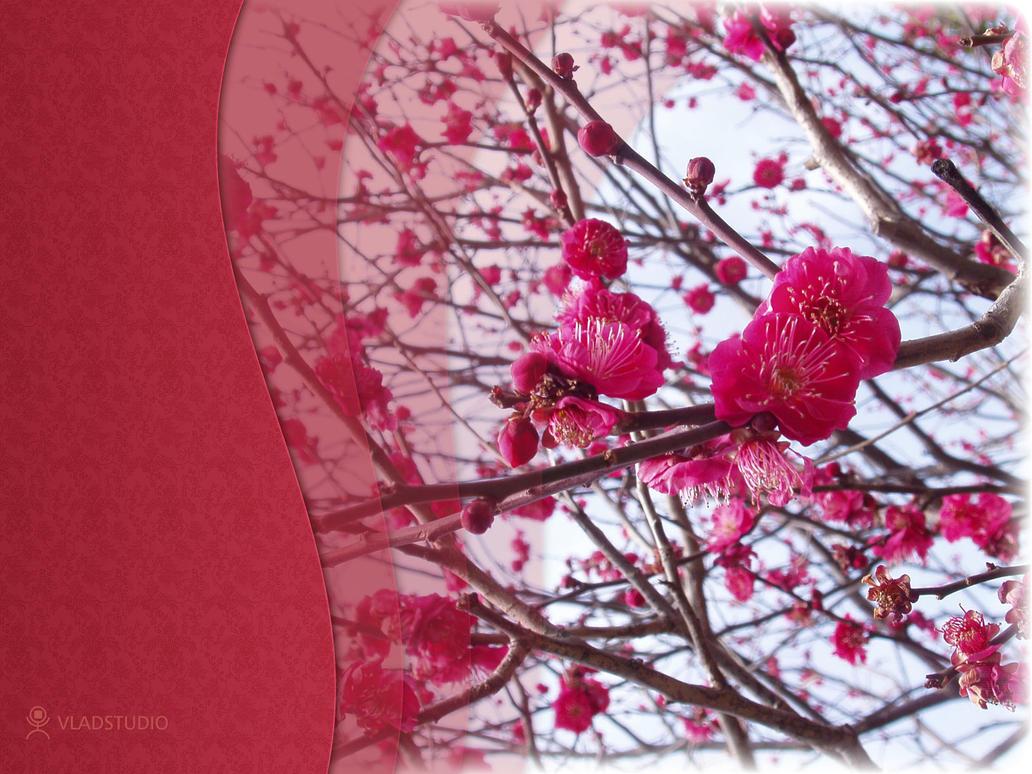 Spring In Japan II by vladstudio