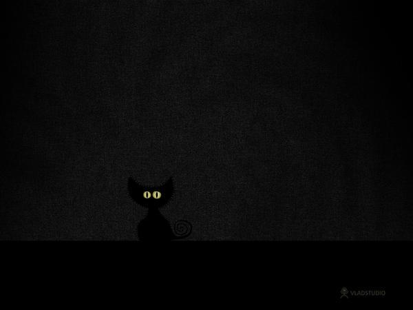Black Cat in Dark Room by vladstudio
