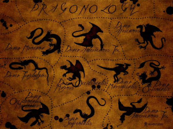 Dragonology by vladstudio