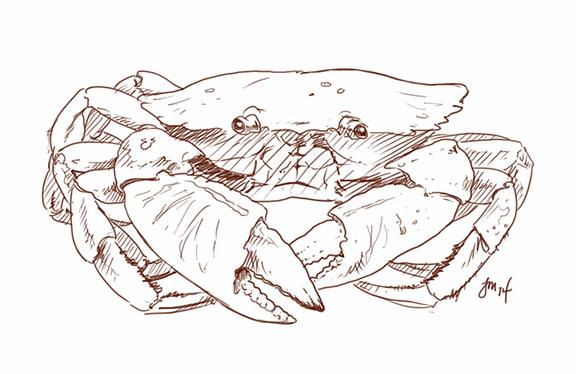 Crab by martianink