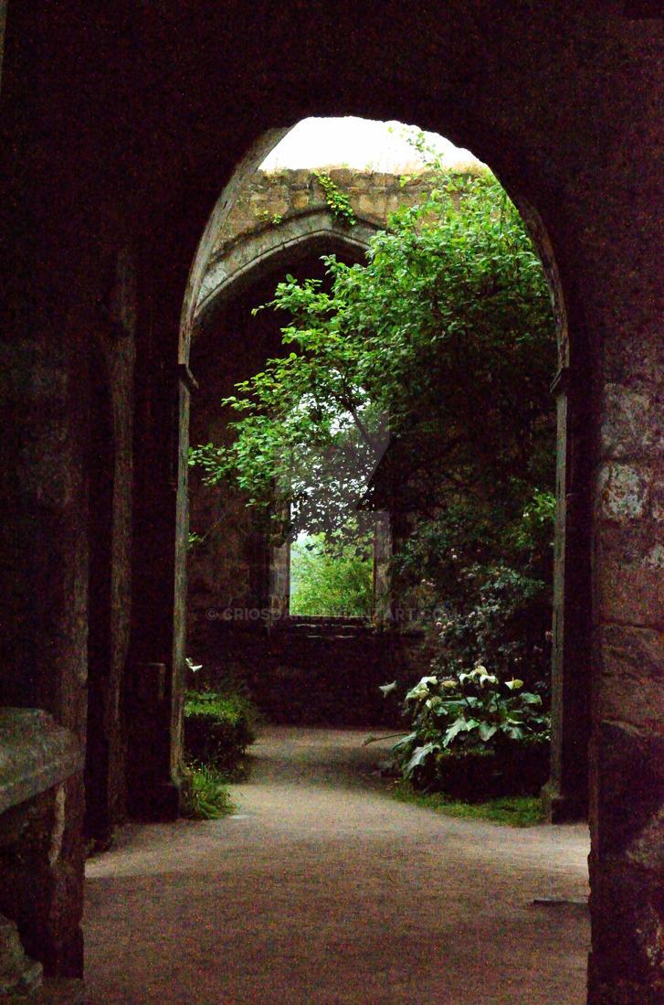 Enchanted by Criosdan